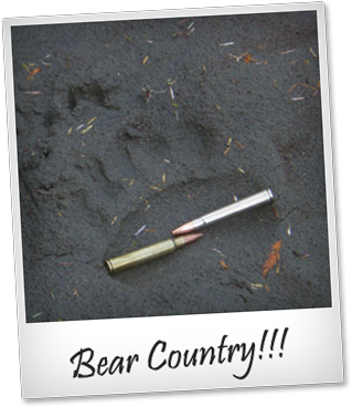 Now This is Bear Country